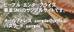 ピープル・エンタープライズ 事業SNSのサンプルサイトです。  メールアドレス:sample@prtls.jp パスワード:sample'